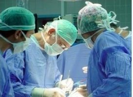 2013 שנת שיא להשתלת איברים